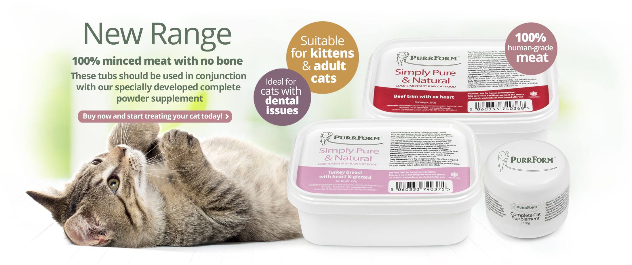 Where To Buy Raw Diet Cat Food